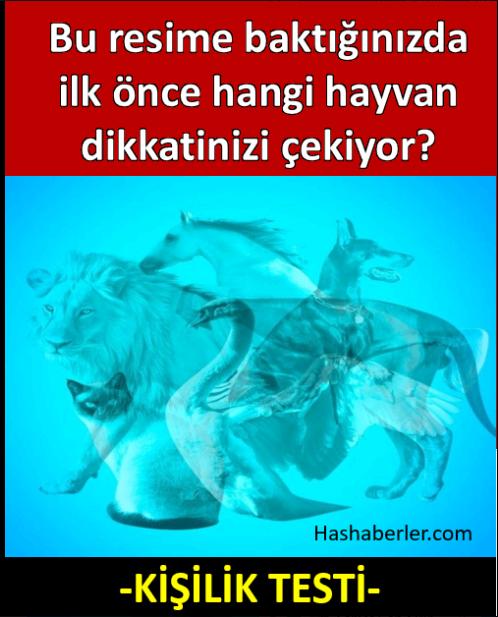 Resimde İlk Önce Hangi Hayvanı Görüyorsunuz?